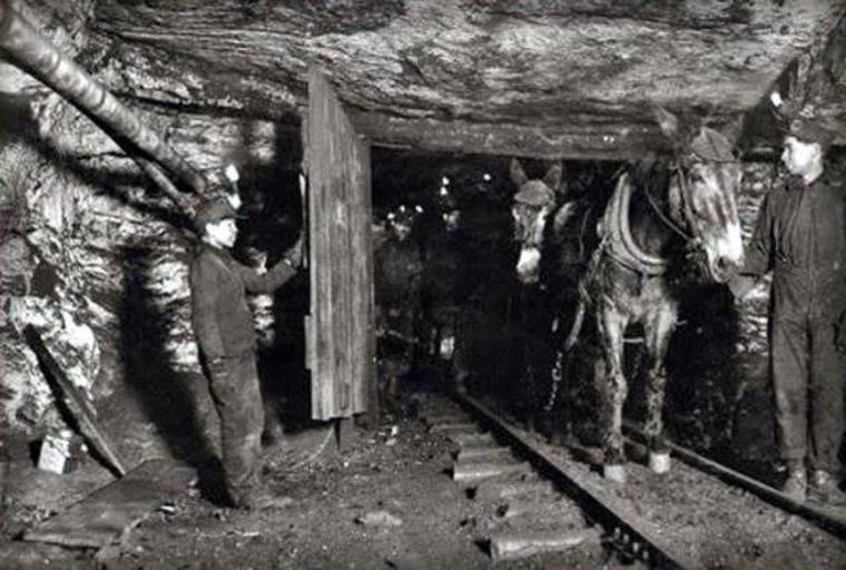 Thumb nin os y caballos trabajando en la mina