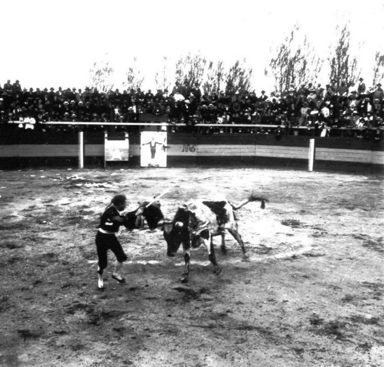 Thumb corridas de toros en la ciudad de talca  c1900