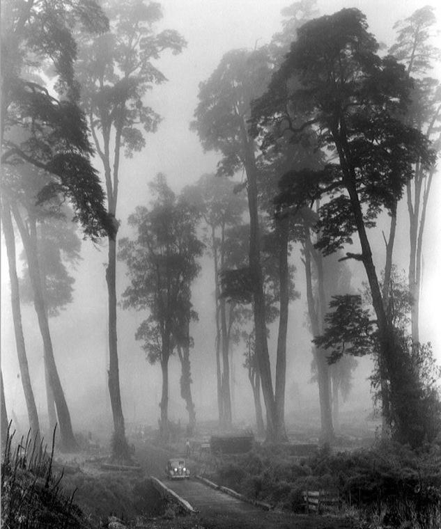 Thumb algun lugar con neblina en 1939  fotograf a de john swope