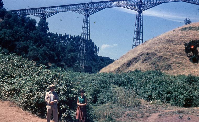 Thumb viaducto malleco enero 1955 ii